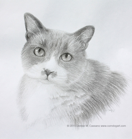 Otis pet portrait, Denise Cassano