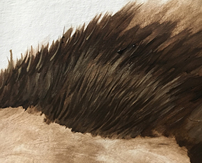 How to Paint Fur Texture